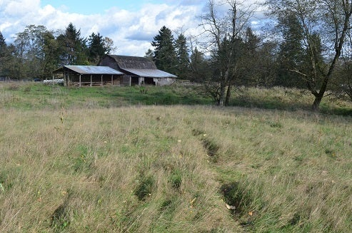 25258 32 AVENUE - Otter District House with Acreage for sale, 1 Bedroom (R2013610) #4